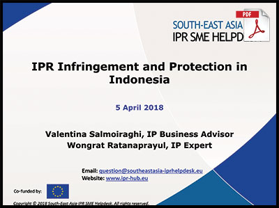 ipr infringement protection indonesia